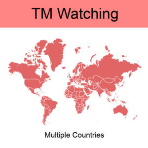 6. Global TM Watching / Monitoring
