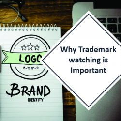 Why Trademark watching is Important