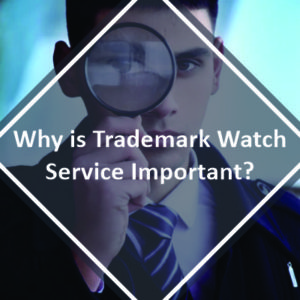 Why is Trademark Watch Service Important
